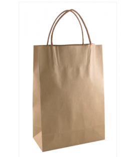 Brown Junior Paper Carry Bag Portrait