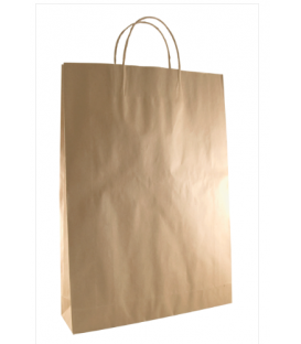 Brown  medium Paper Carry Bag Portrait