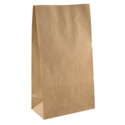 Flat Checkout Bags - Paper Pkt 25